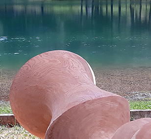 detail of the wood larch sculpture by EManuela Camacci